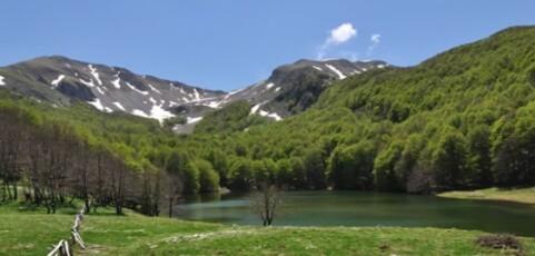 Parchi naturali, Lacorazza chiede discussione in Consiglio