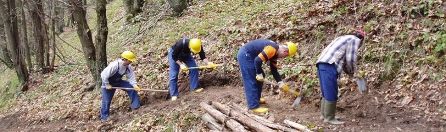 lavoratori-forestali